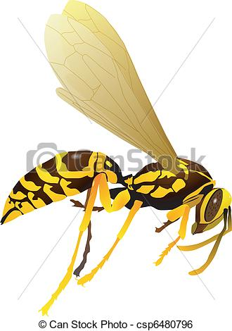 Clip Art Vector of vectors wasp on a white background csp6480796.