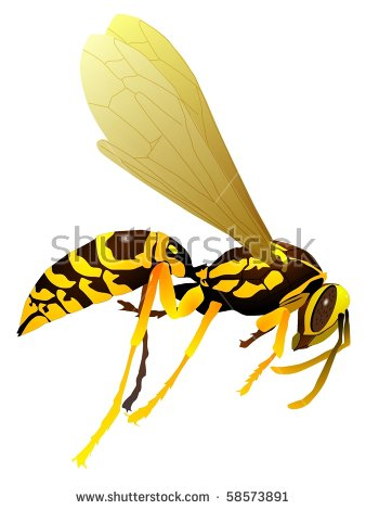 Waspish Stock Vectors & Vector Clip Art.