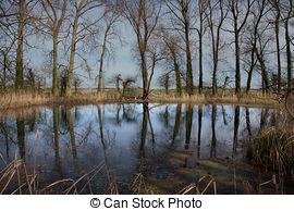 Stock Bilder von Teich, Brunnen, mit, wasserlauf csp14718354.