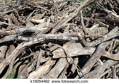 Stock Photo of waste wood on a lumbering site k16054462.