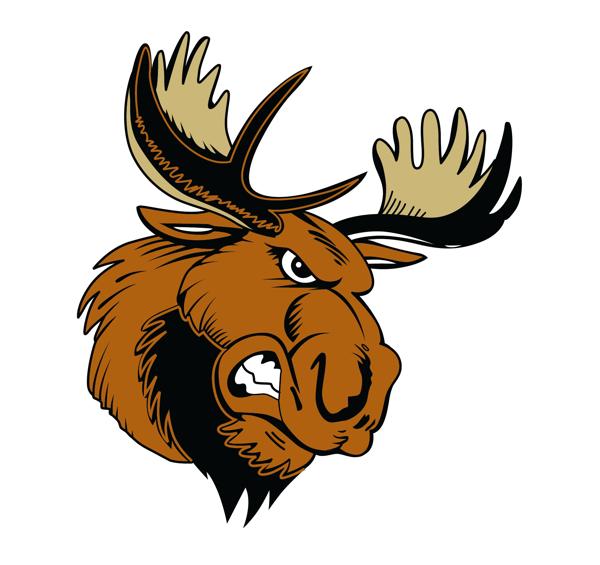 Maine Moose.