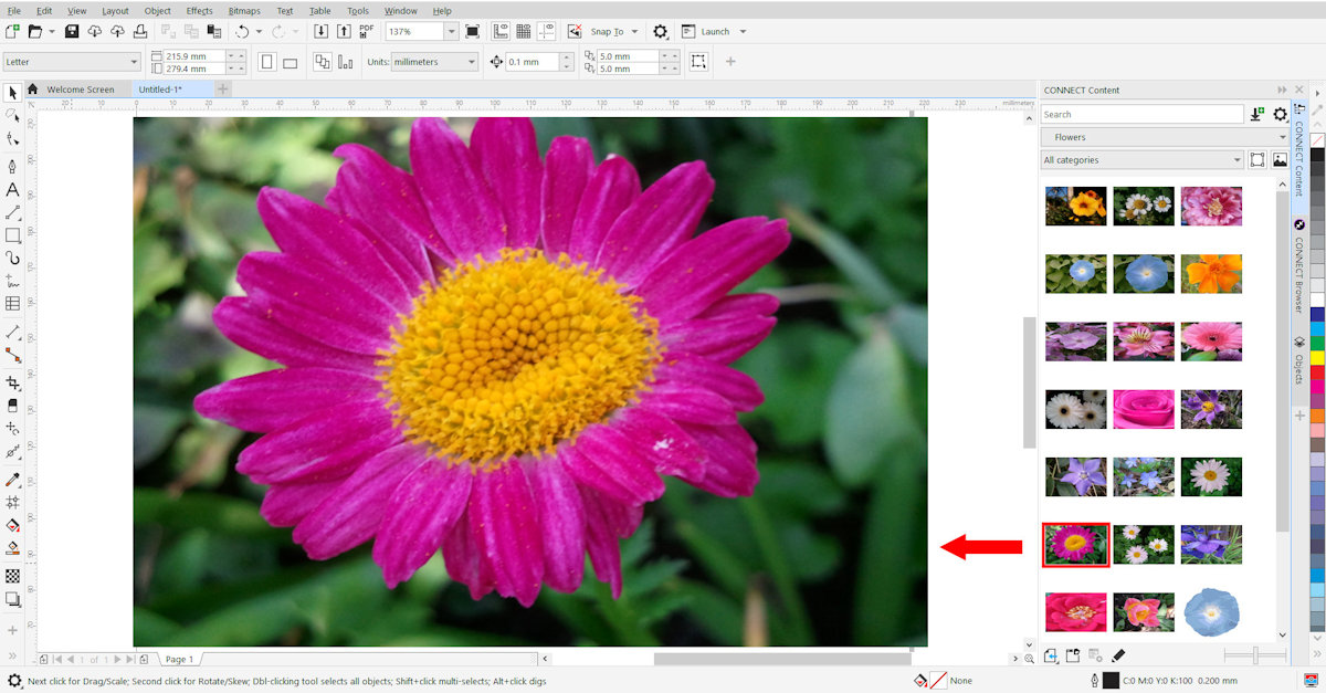 How to Make Clipart from a Photo.