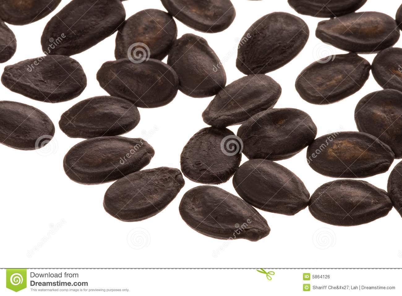 Water seed clipart.