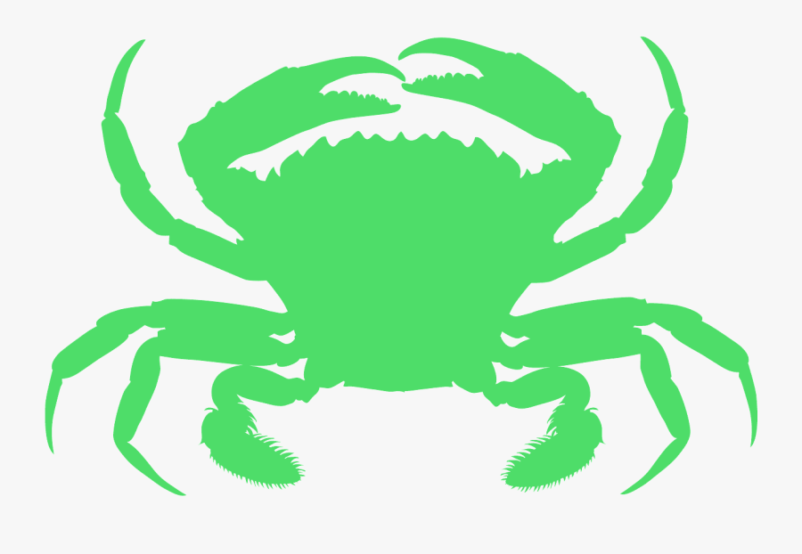 Animals Live In Water And Land , Free Transparent Clipart.