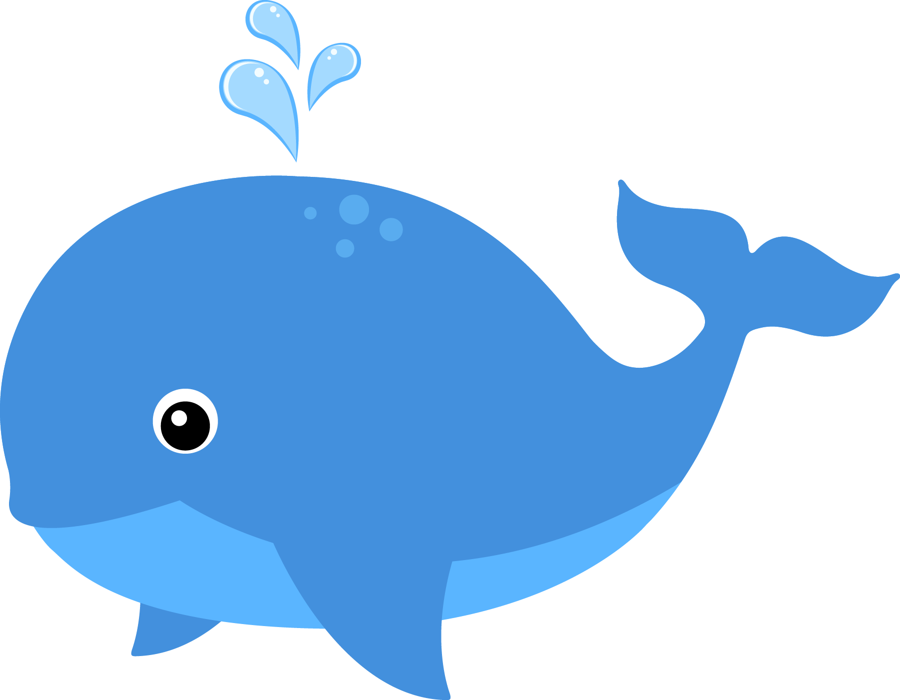 Sea Animals Clipart Png.