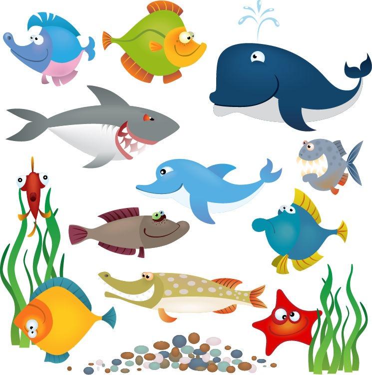Picture Of Ocean Animals.