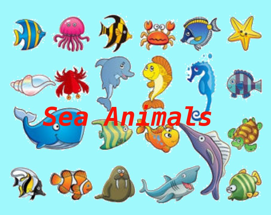 Sea Animals and Ice Living Creatures.