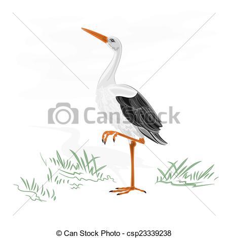 Water bird Clipart Vector Graphics. 6,451 Water bird EPS clip art.