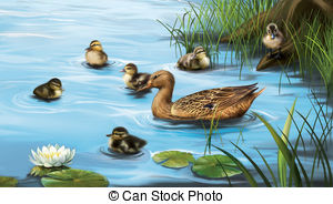 Water birds Illustrations and Stock Art. 10,180 Water birds.
