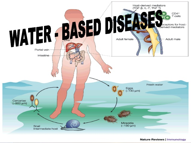 Water borne diseases.