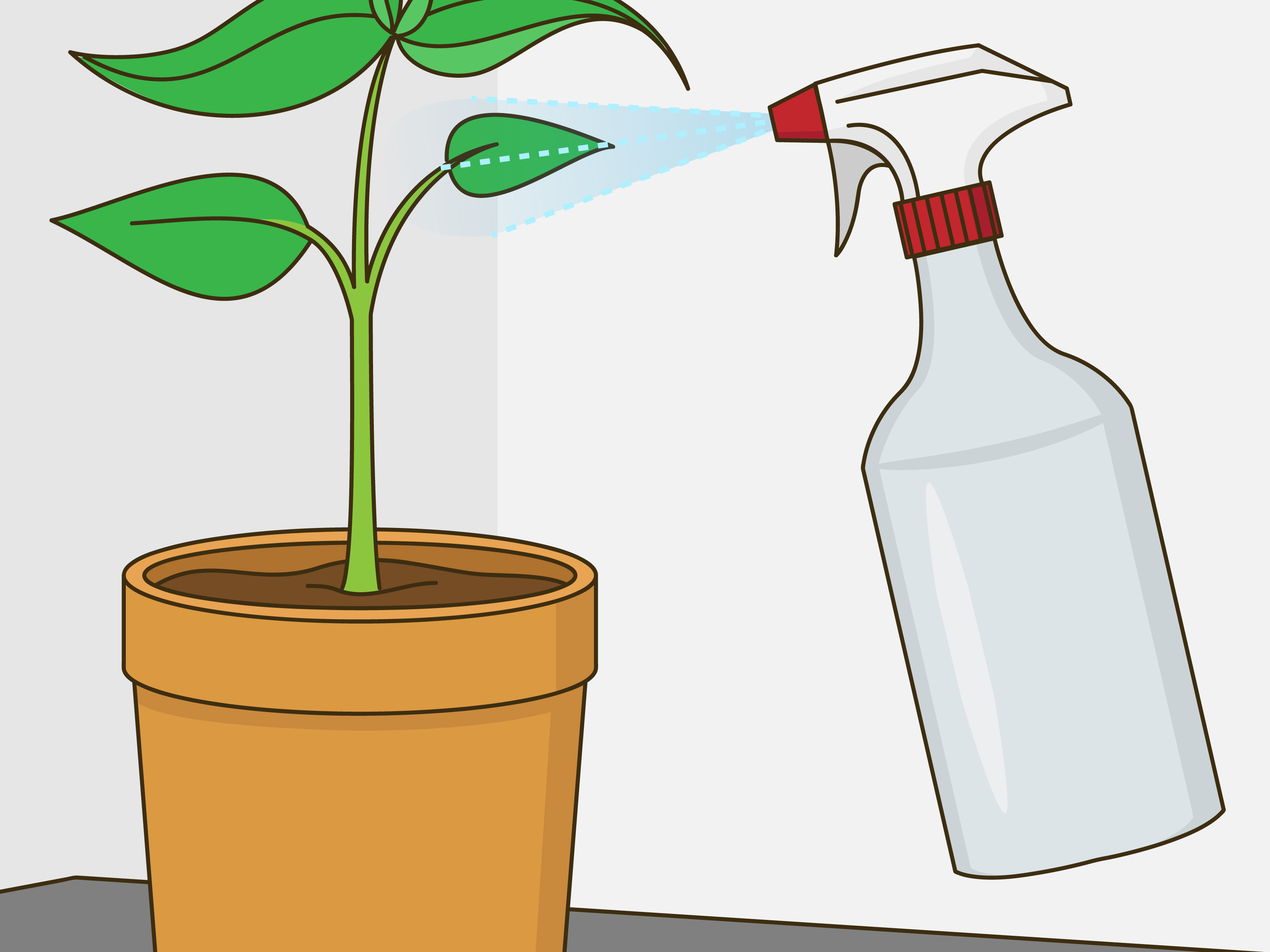 4 Ways to Revive a Plant.