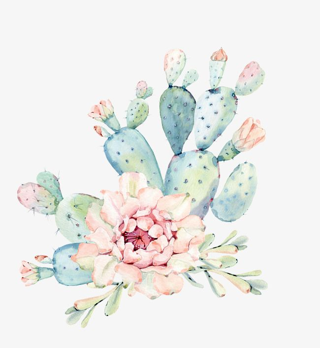 Hand Painted Watercolor Flowers Green Plants Cactus.