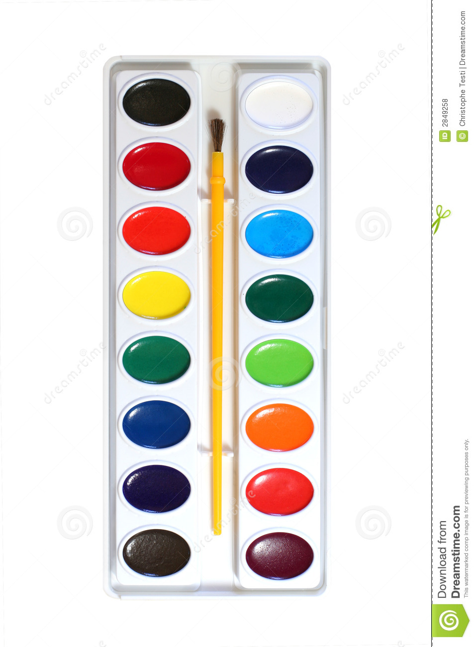 Water color clipart.