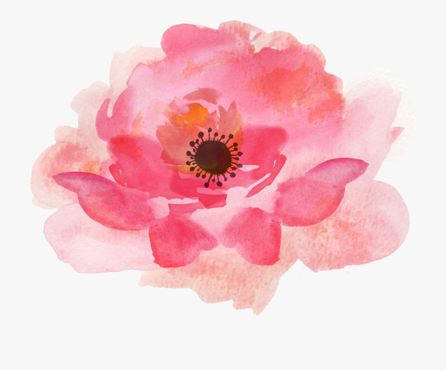 Single Flower Watercolor Clipart , Transparent Cartoon, Free.