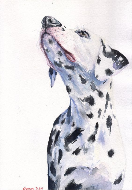 Dalmatian watercolor ORIGINAL Painting art beautiful colorful gift.