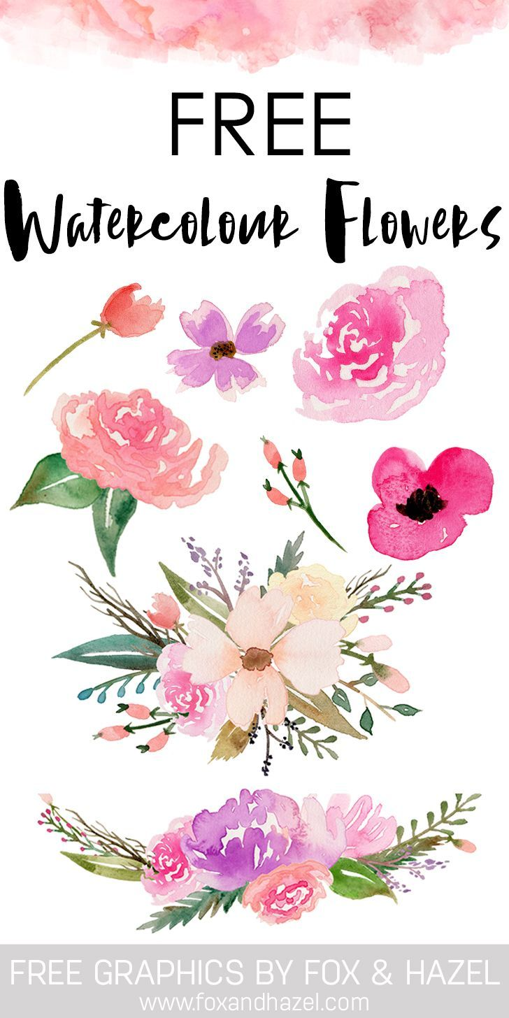 Free Watercolor Flower Graphics from.