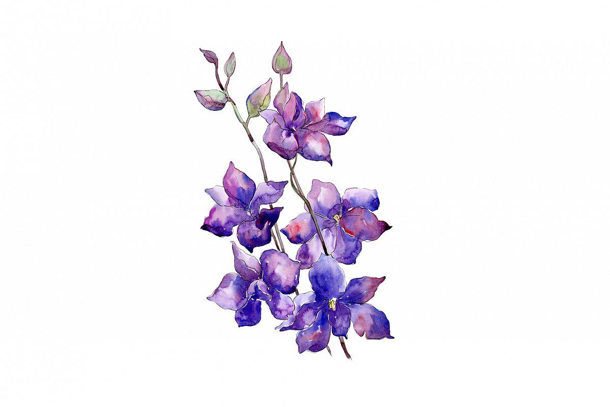 Bouquet of purple flowers PNG watercolor set.