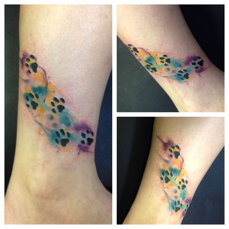 Watercolor paw print tattoo.