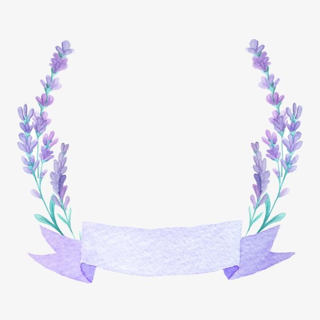 Beautiful Lavender, Lavender, Purple Flower, Purple PNG.