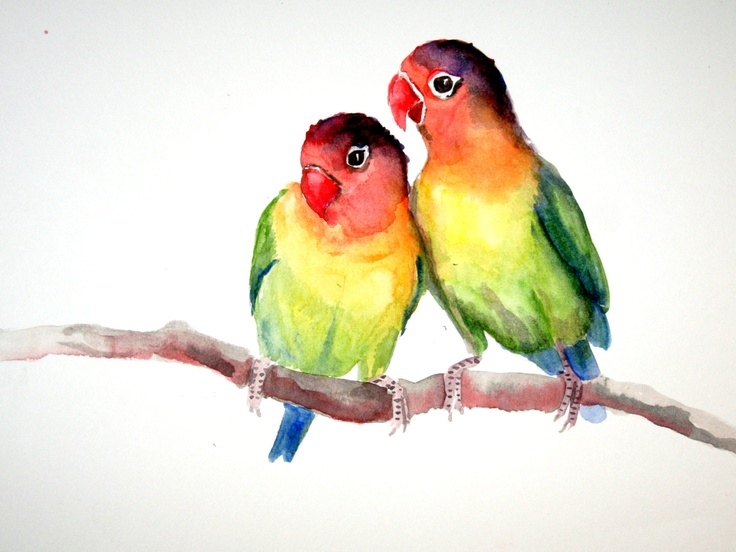 25+ best ideas about Lovebird Tattoo on Pinterest.