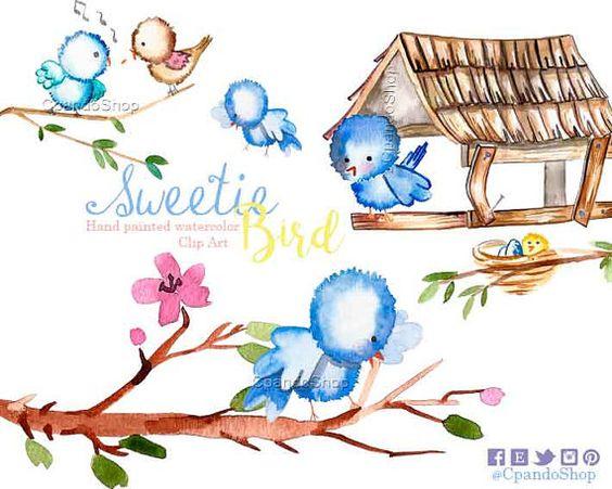 Cute Birds watercolor baby animal clip art bird watercolor love.
