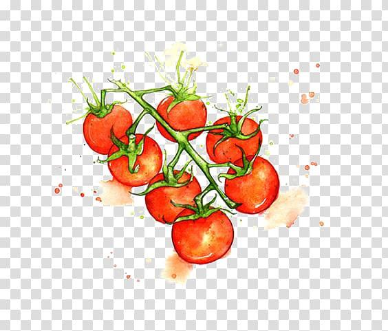 Red and green cherry tomatoes art, Juice Cherry tomato.