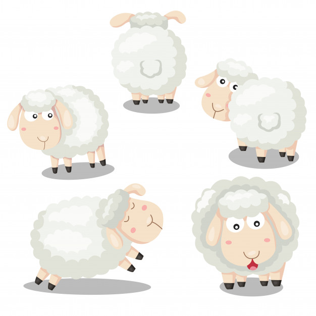 Sheep Vectors, Photos and PSD files.