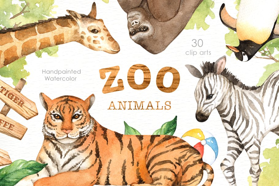 Zoo Animals Watercolor clipart ~ Illustrations ~ Creative Market.