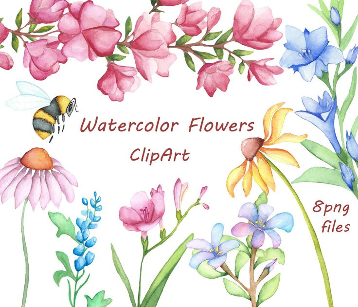 Watercolor Flowers Clipart, Digital Clipart, watercolor clipart.