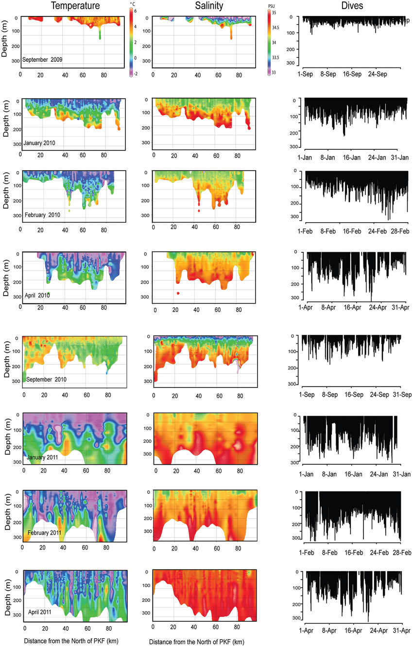 Fig 7. Temporal changes in temperature and salinity in the water.