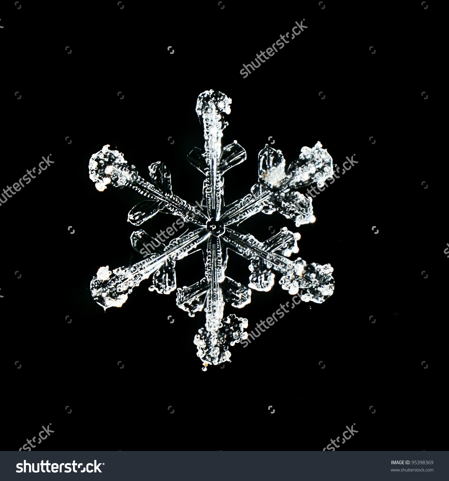 Real Snowflakes Water Crystals Stock Photo 95398369 : Shutterstock.