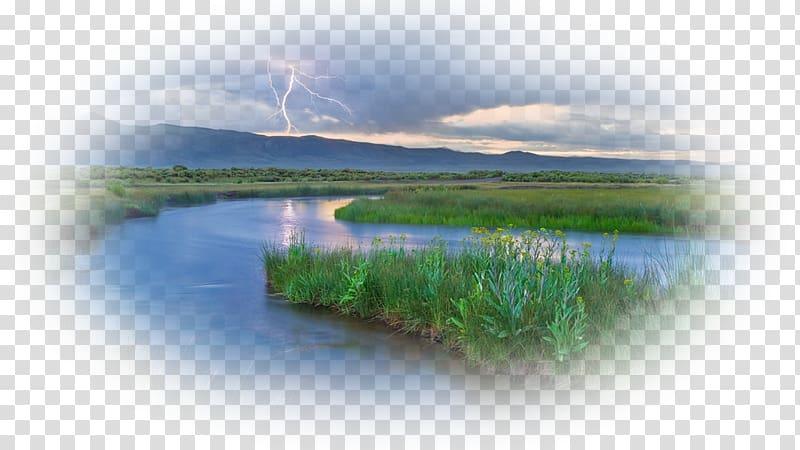 Water resources Loch Benton Crossing, California Wetland.