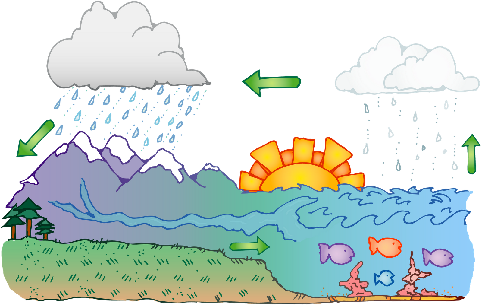 14+ Water Cycle Clipart.
