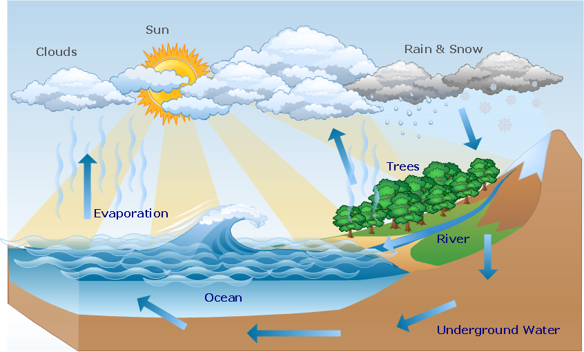 Water cycle diagram.
