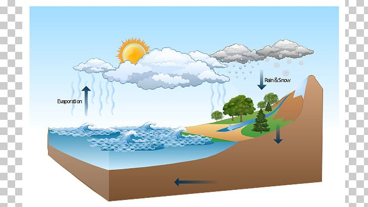 Diagram Water Cycle Nature Drawing Illustration PNG, Clipart.