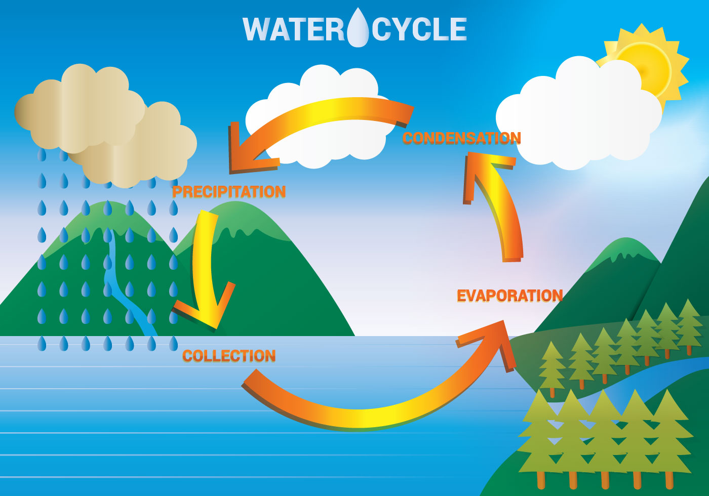 Water Cycle.