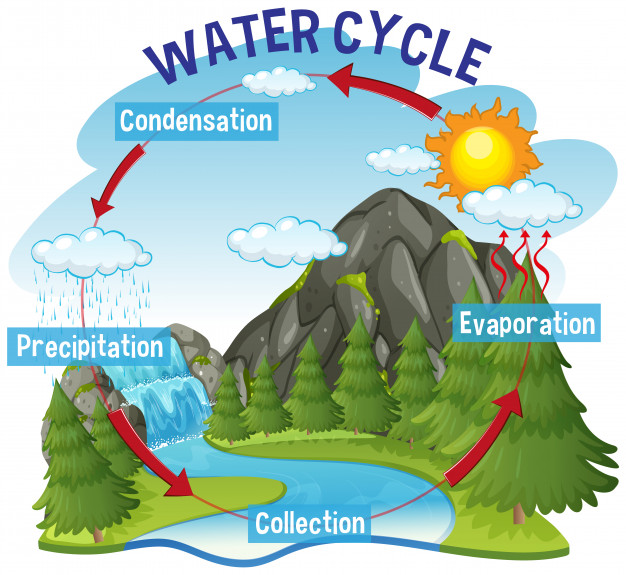 Water cycle process on earth Vector.