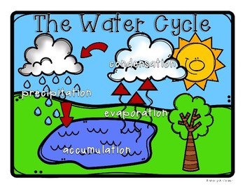 Water Cycle: Poster / Classroom Display and Practice Worksheets.