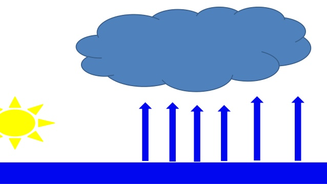 The Water Cycle: English and Spanish.
