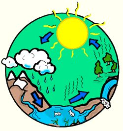 127 best images about Water Cycle on Pinterest.