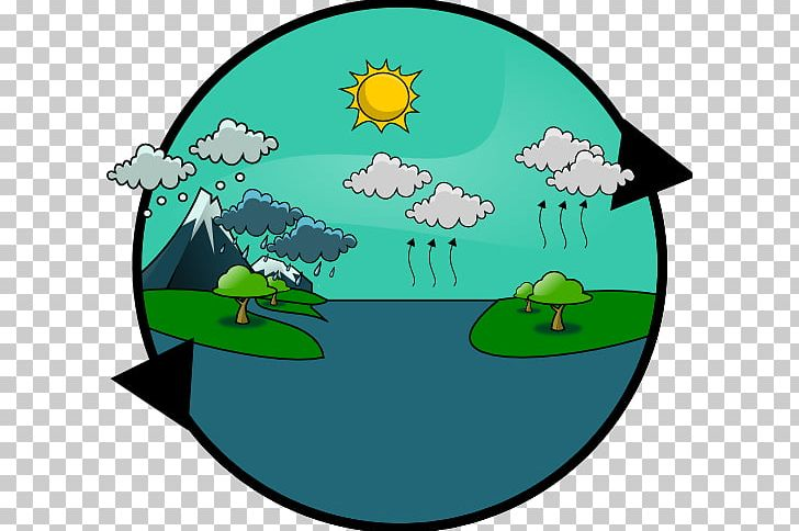 Water Cycle Rain Knowledge Resource PNG, Clipart, Cartoon.