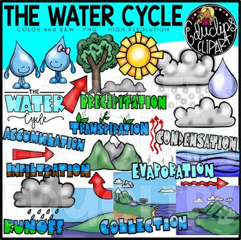 The Water Cycle Clip Art Bundle {Educlips Clipart}.