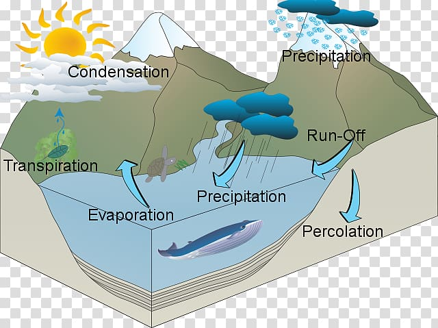 Water resources Water cycle, Water Cycle transparent.