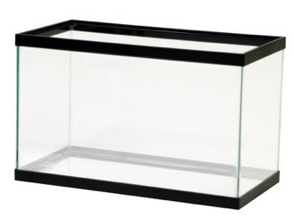 Empty Fish Tank Filled With Water.