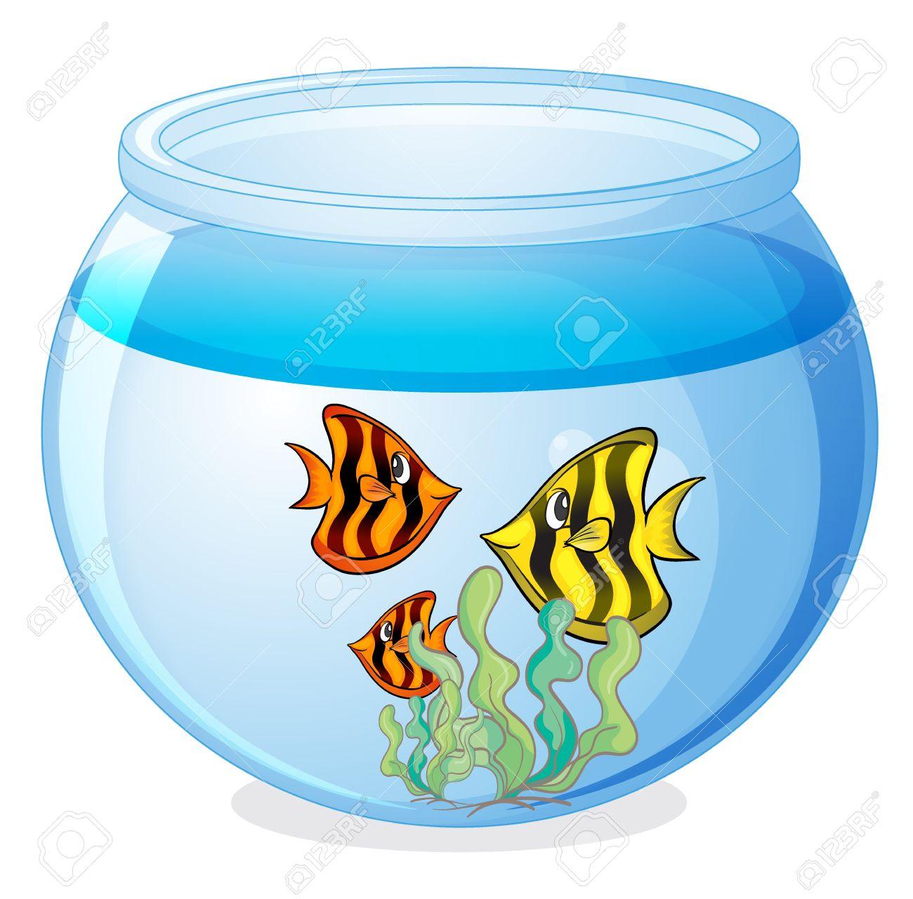 water filled aquarium clipart