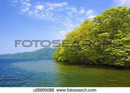 Pictures of Lake Towada Water Forest Cloud Sky Mountain Range.