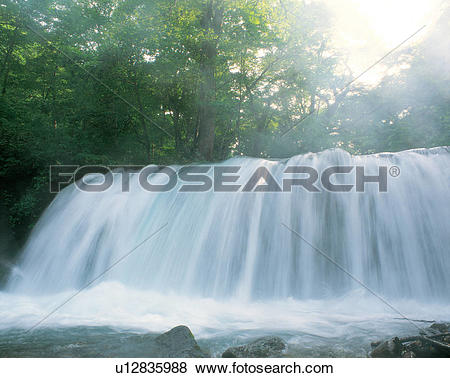 Pictures of water, forest, outdoors, scenic, natural world.