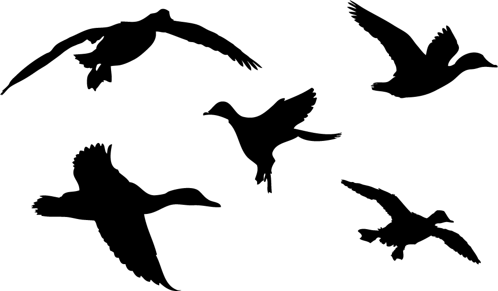 Waterfowl camo clipart.