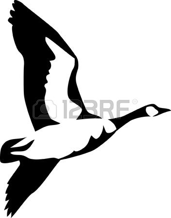 3,896 Waterfowl Stock Vector Illustration And Royalty Free.
