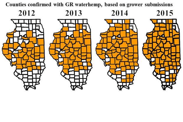Spread of waterhemp resistance narrows herbicide options.